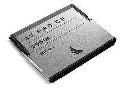 AVpro CF 256GB 2 Pack