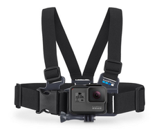 Junior Chesty Chest Harness